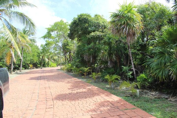 Parrot Tree Plantation, $154,000 Water Front lot #1, Roatan,