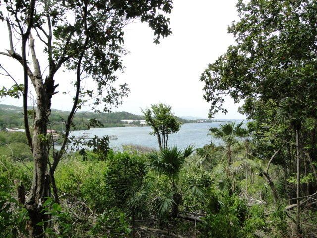 Brick Bay Road, Brick Bay Land 4.53 Acres, Roatan,
