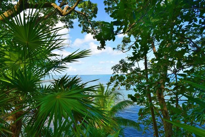 Blue Harbour, Beach Front Bluff Lot No.17, Roatan,