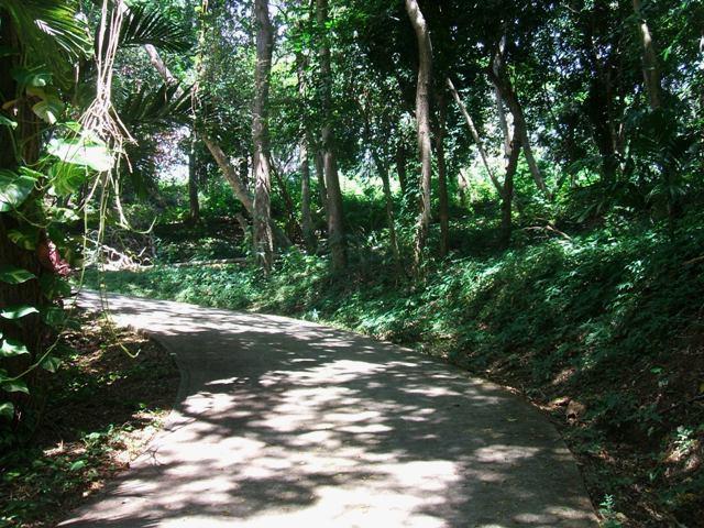 Brick Bay Road, Brick Bay Lot #4, 1355 SM, Roatan,