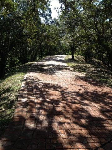 Parrot Tree Plantation, PTP lot 80, Roatan,