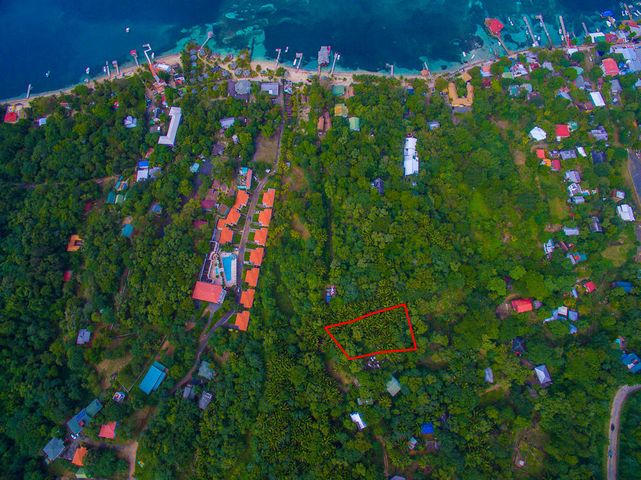 Aerial view of the property - located in a tranquil area of West End but within walking distance of all amenities