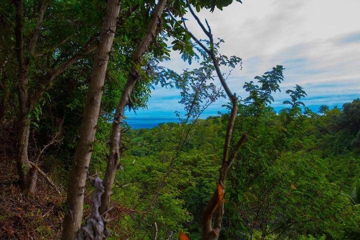 Ocean views from