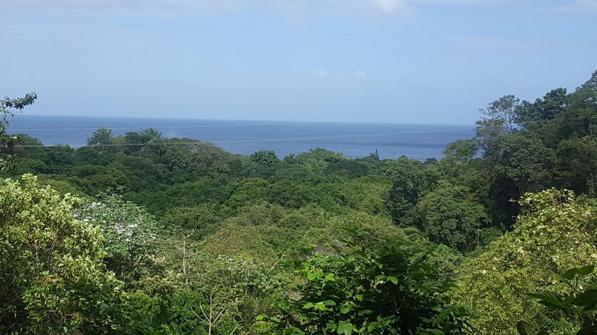 sandy bay, 0.64 acres of lush green land, Roatan,