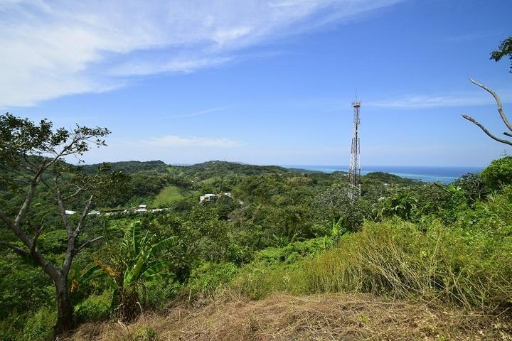 Pollytilly Views, 360° Hill Top Ocean Views, Roatan,
