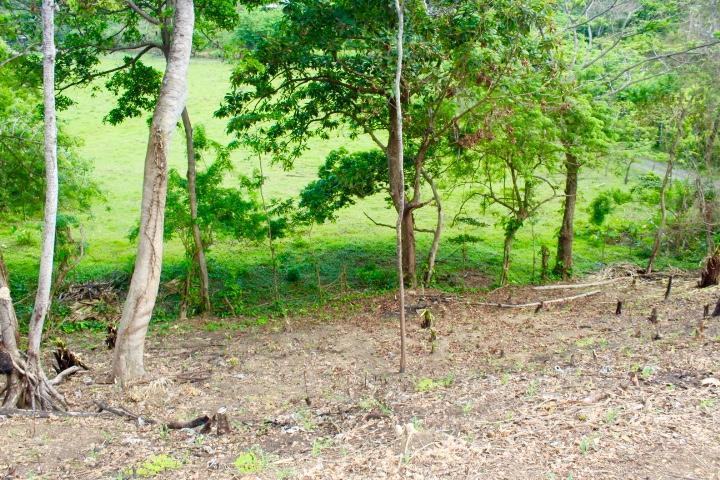 Gibson Bight, 0.76 acres, Roatan,