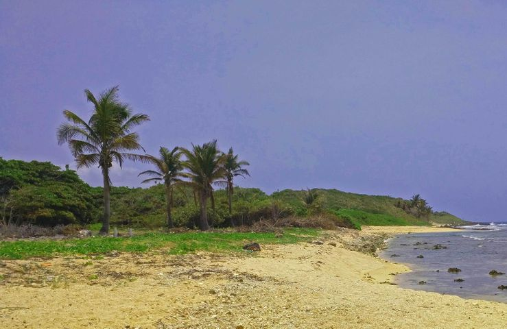 Pumpkin Hill Beach, Lot A, Huge 0.46 Acre Oceanfront Lot, Utila,
