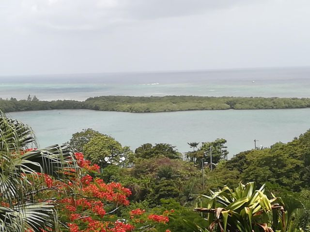 Politilly Bight, Politilly Views, Roatan,