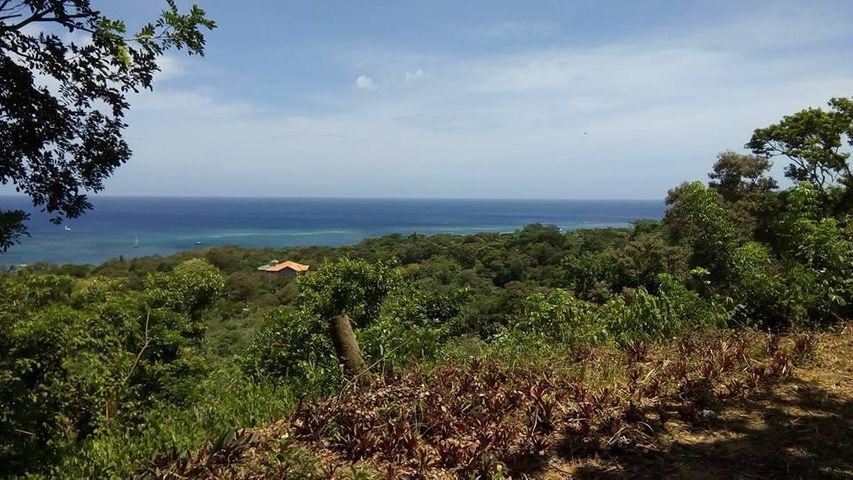 Tamarind Drive, West Bay, Hill Top Lot #23 .268 acre, Roatan,