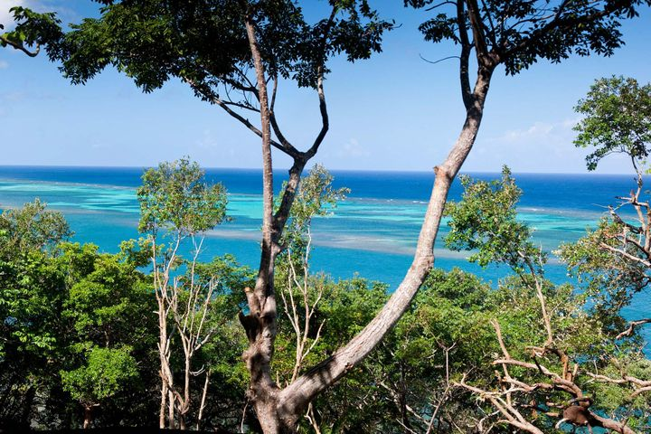 Waterfront Lots – Punta Blanca, Roatan,