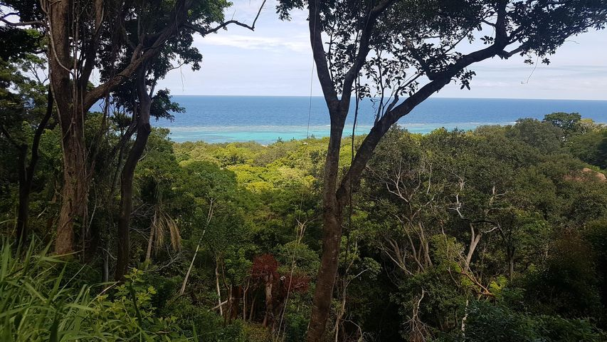 White Rock Hills, Lot 3, Roatan,
