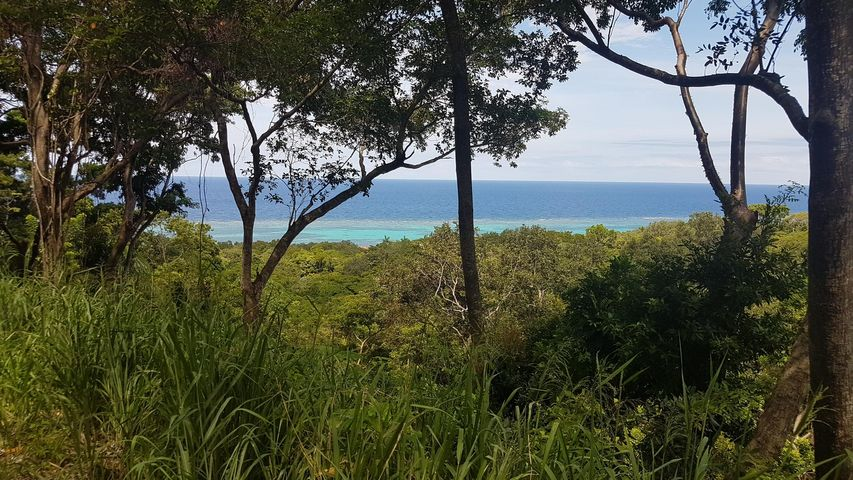 White Rock Hills, Lot 4, Roatan,