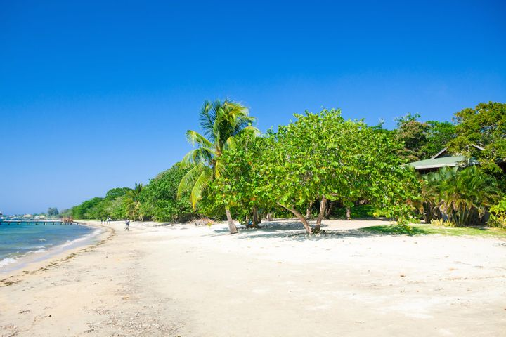 Acres!, West Bay Land Development: 25, Roatan,