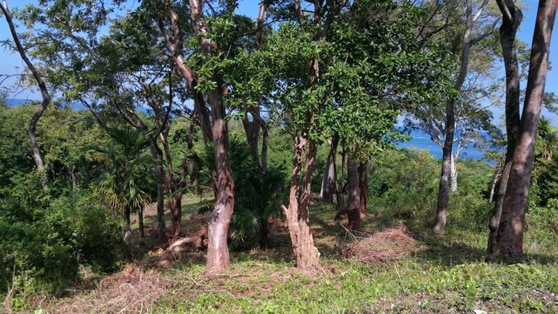 Sunset Ridge, 0.22 Ocean View Lot, Roatan,