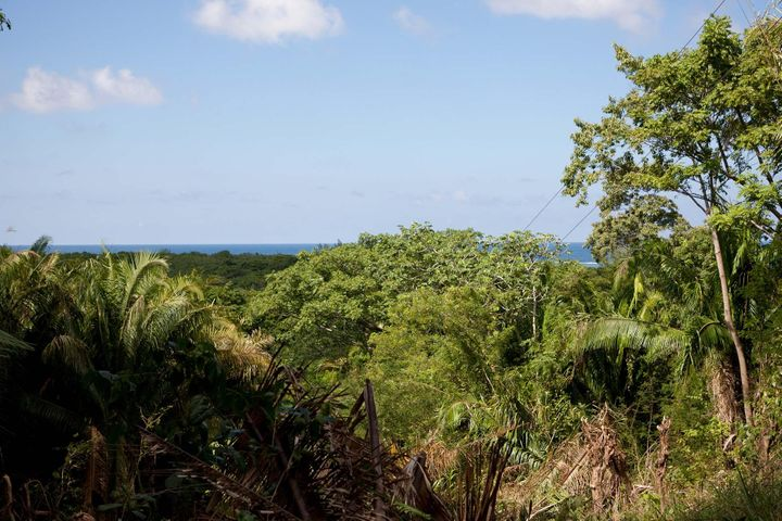 View, $10,000 rebate available, Palmetto Vista Road. Great, Roatan,