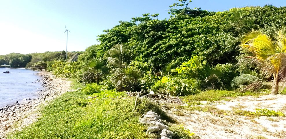 Sandy Beachfront Lot, Roatan,