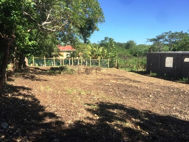 Your Dream Home on Rocky Hill, Appealing land Ready to Build, Utila,