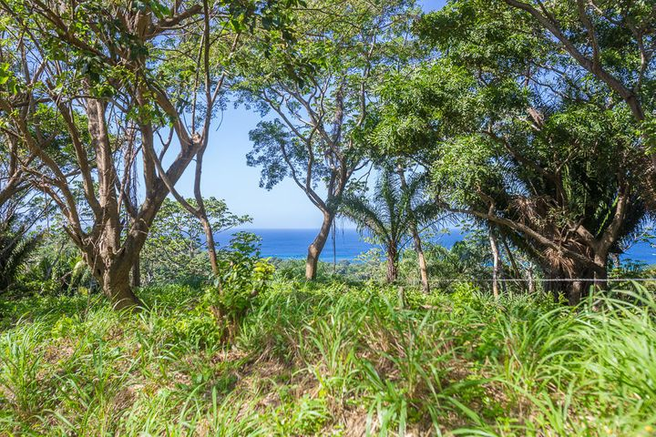 Clear ocean views from this hillside lot