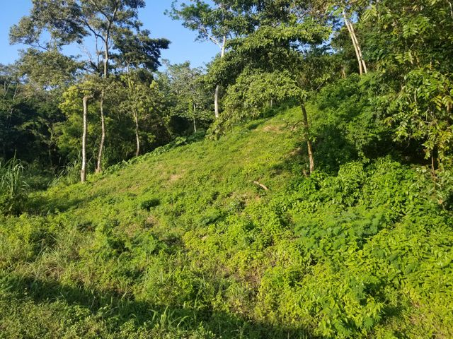 Gibson Bight, Residential Lot 5, Roatan,