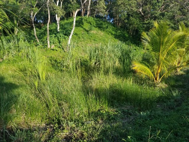 Gibson Bight, Affordable Residential Lot 6, Roatan,