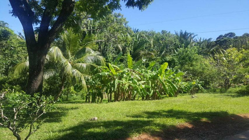 Sandy Bay, Lot in nice residential area, Roatan,