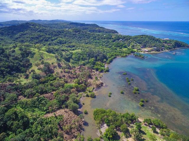 Punta Blanca, Walkers Cove, Roatan,