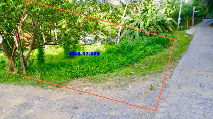 7 minutes away from West End, Flat Buildable lot, Roatan,