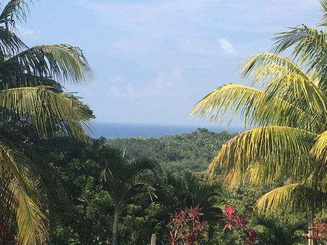 Turtling Bay Lot 29, Roatan,