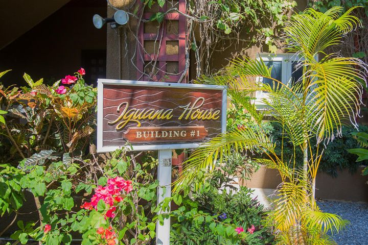 Welcome to the Penthouse Condo at the Iguana in Mangrove Dock
