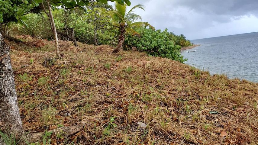 Main Road, Camp Bay, 3.73 acre property, Roatan,