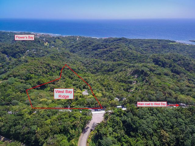 Aerial view of the property facing the south shore and the approximate property lines