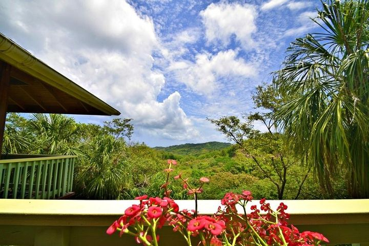 Main St Corozal, Stunning Ocean View Home, Roatan,