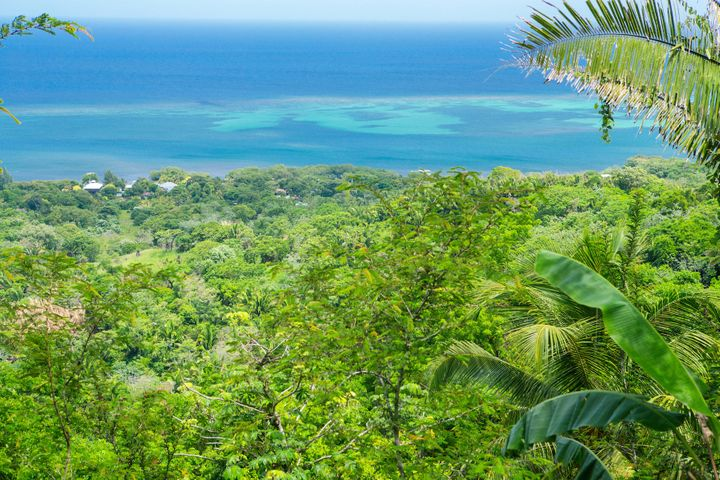 Land Development, Crawfish Rock, Roatan,