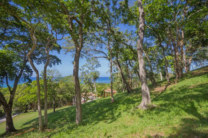 This hillside lot offer stunning ocean views.