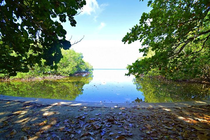 Blue Ocean Reef, Big Bight, Beachfront - 1 Acre, Roatan,