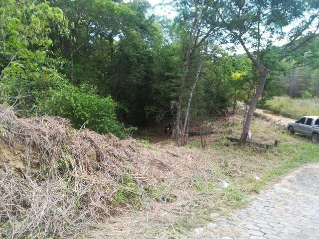 Great Lot Ready to Build on!, Roatan,