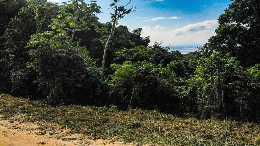Zolitur Road, French Harbour Ocean View Lot, Roatan,