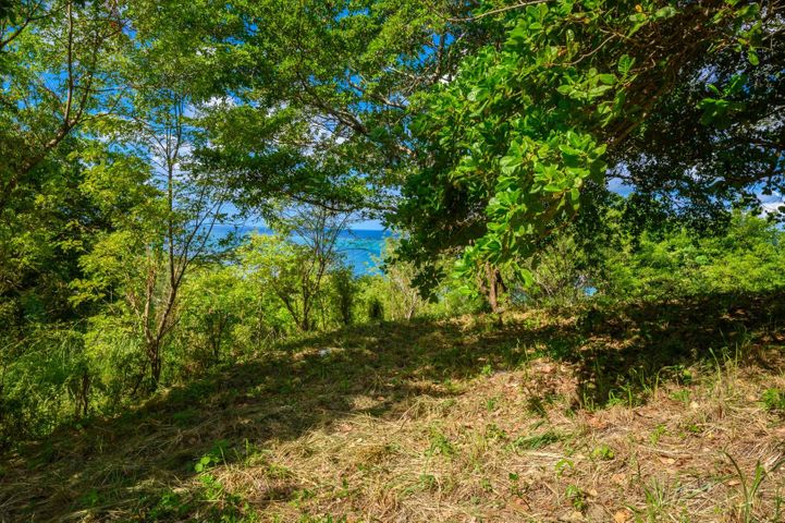 Punta Gorda Ocean View Lot, Roatan,