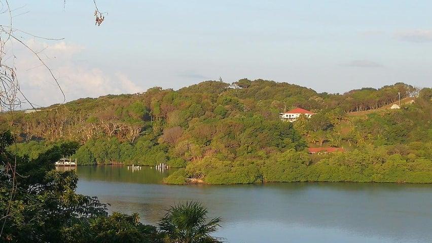Parrot Tree Plantation, Lot 42, Ocean View, Roatan,
