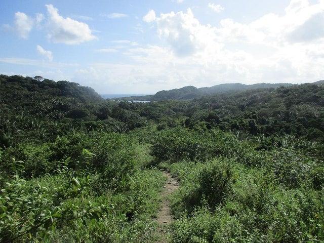 Surrounded by lush vegetation.
