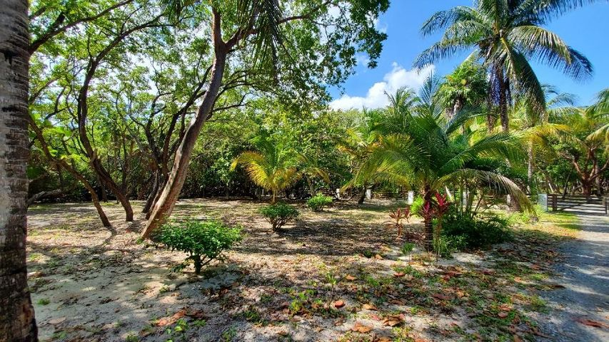 0.28 Acres with Beach Access, Lot # 10 Camp Bay, Roatan,