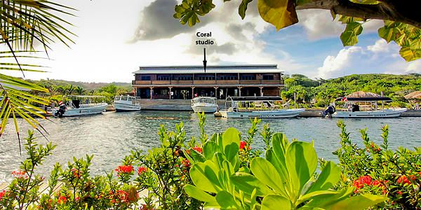 Condos at Barefoot Divers, Coral studio condo in the, Roatan,