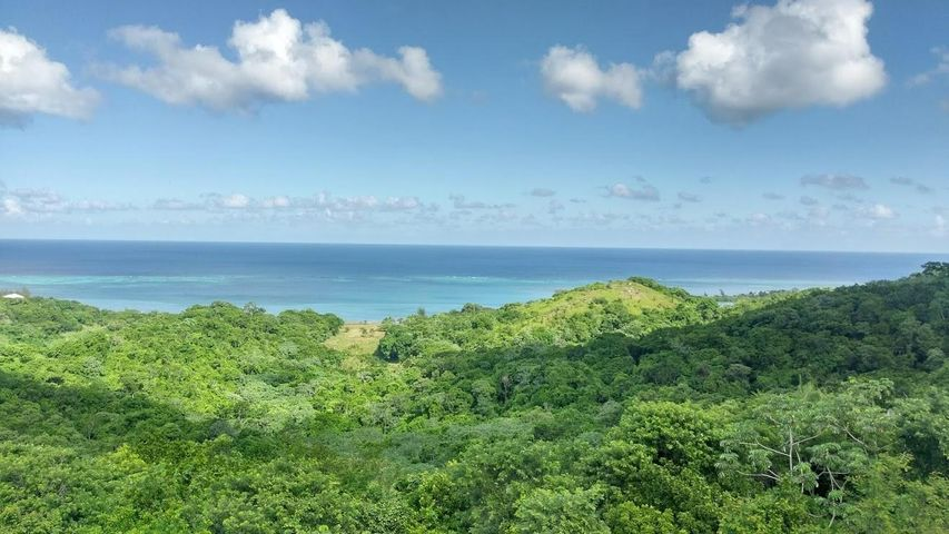 Great Views!, You Gotta See This!, Roatan,