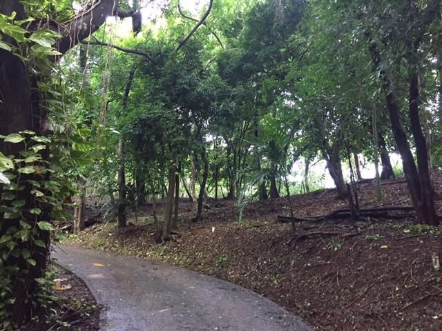 Brick Bay lots, Roatan,