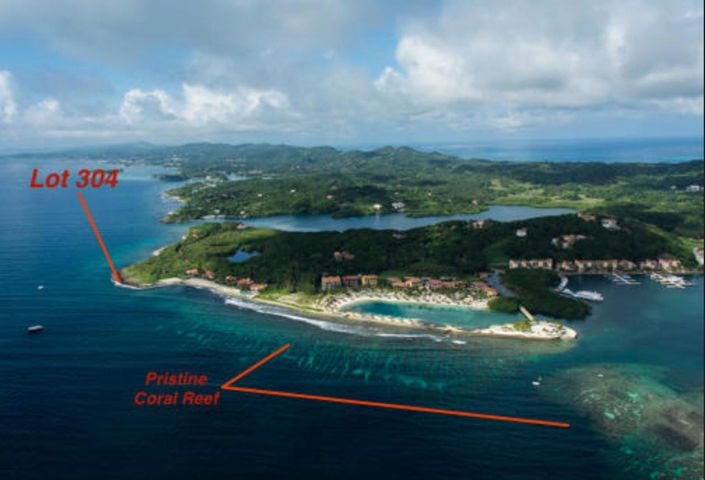 Oceanfront Lot #304, Parrot Tree Plantation, Roatan,