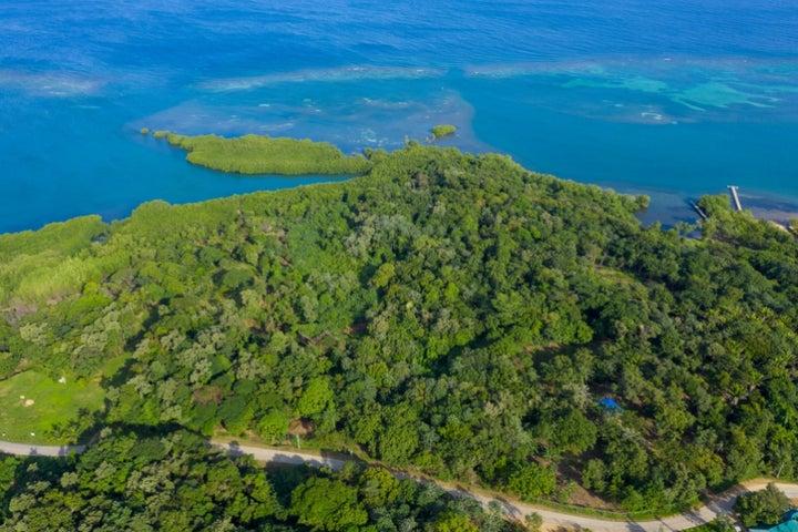 Mud Hole, 12.206 acres land locate in, Roatan,
