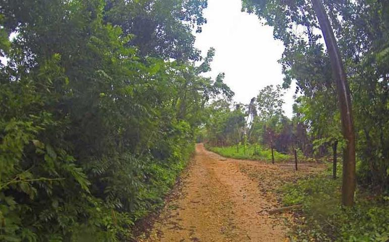 Get your own homesite in Utila's popular new area, conveniently located just past the Airport Rd.