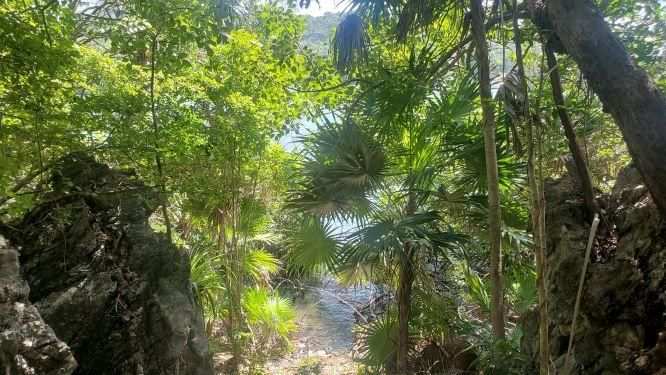 Lot # 5, 73 Ft. Oceanfront, Roatan,