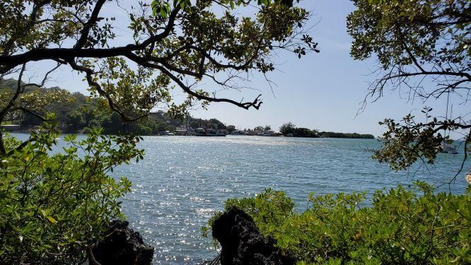 Boat Access Only, Lot # 2, Jonesville, 94 Ft., Roatan,