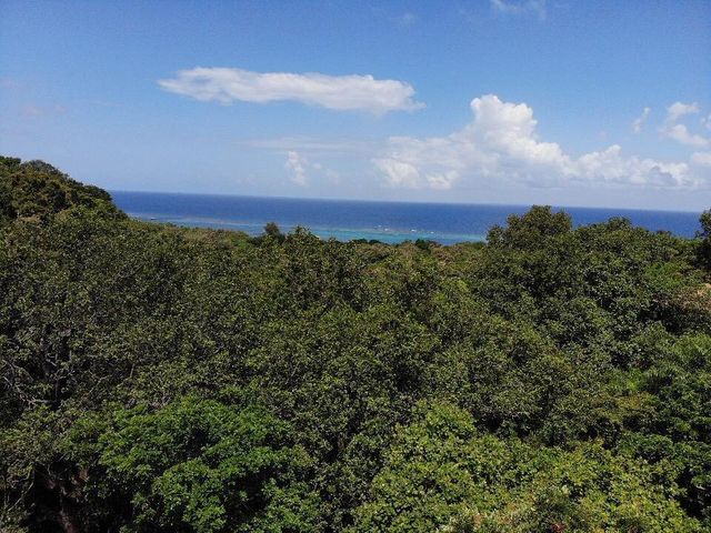 Paved Roads,Topridge Sandy Bay, Half Acre, Ocean View, No HOA, Roatan,
